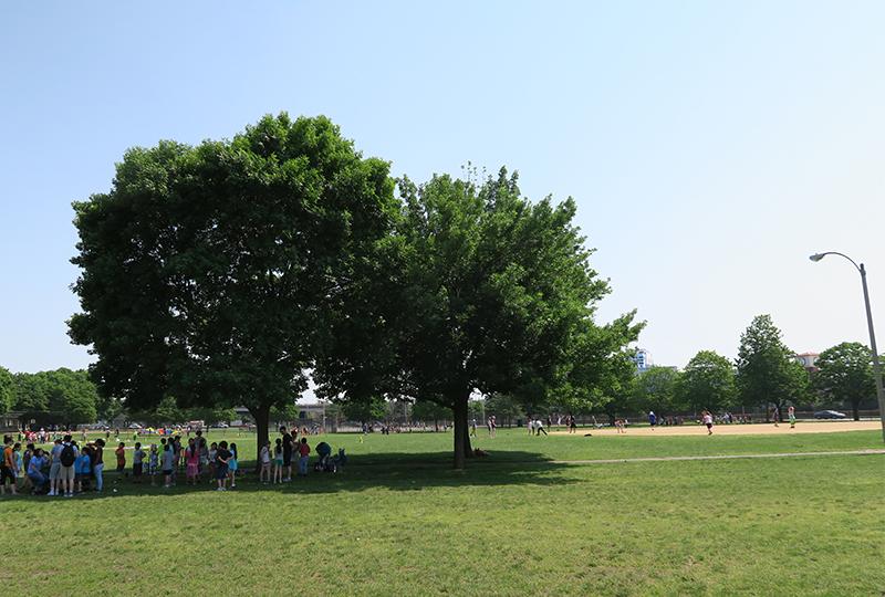 Foss Park